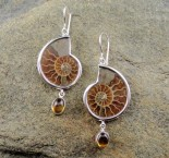 Ammonite & Citrine Earrings