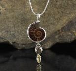 Ammonite & Pyrite & Citrine Pdt Med