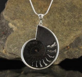 Ammonite Pendant XL