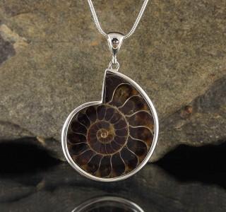 Ammonite Pendant Lge