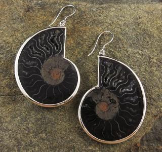 Ammonite Earrings XL